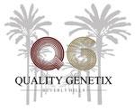 Quality Genetix